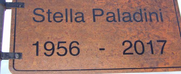 Se señalizó el Acceso portuario de San Nicolás de los Arroyos  con el nombre de Stella Paladini